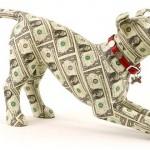 Топ 10 самых дорогих собак в мире